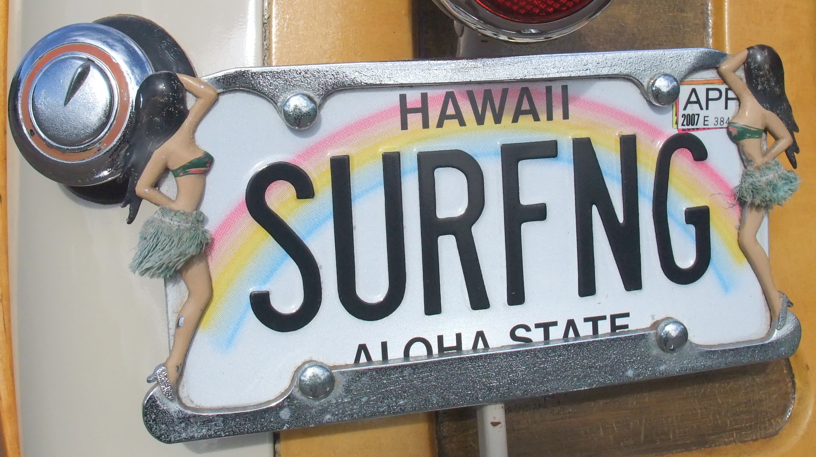 Surfing evrywhere