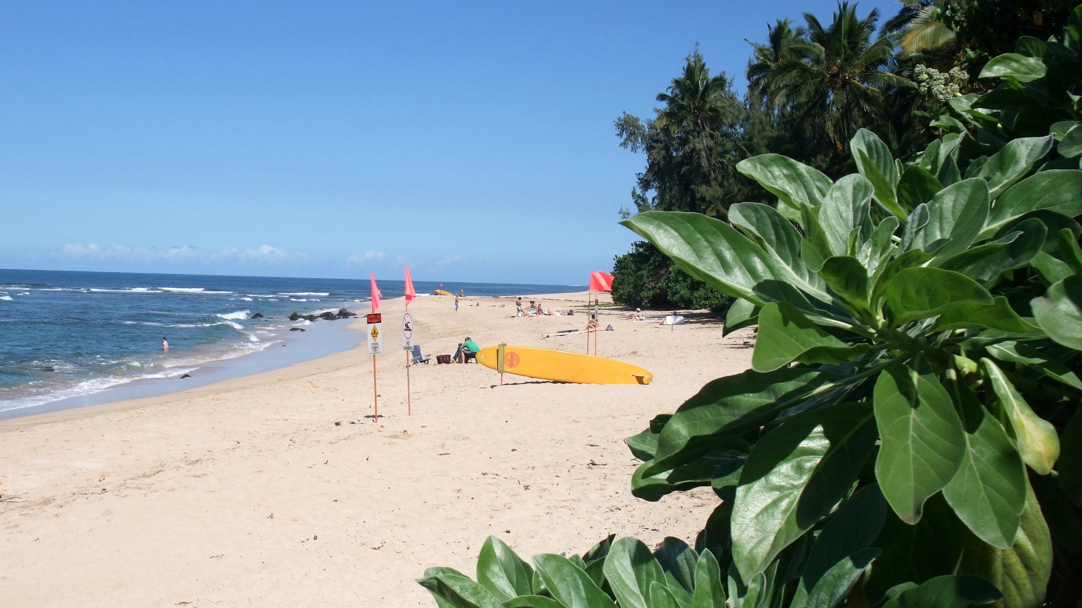 Chuns Reef beach