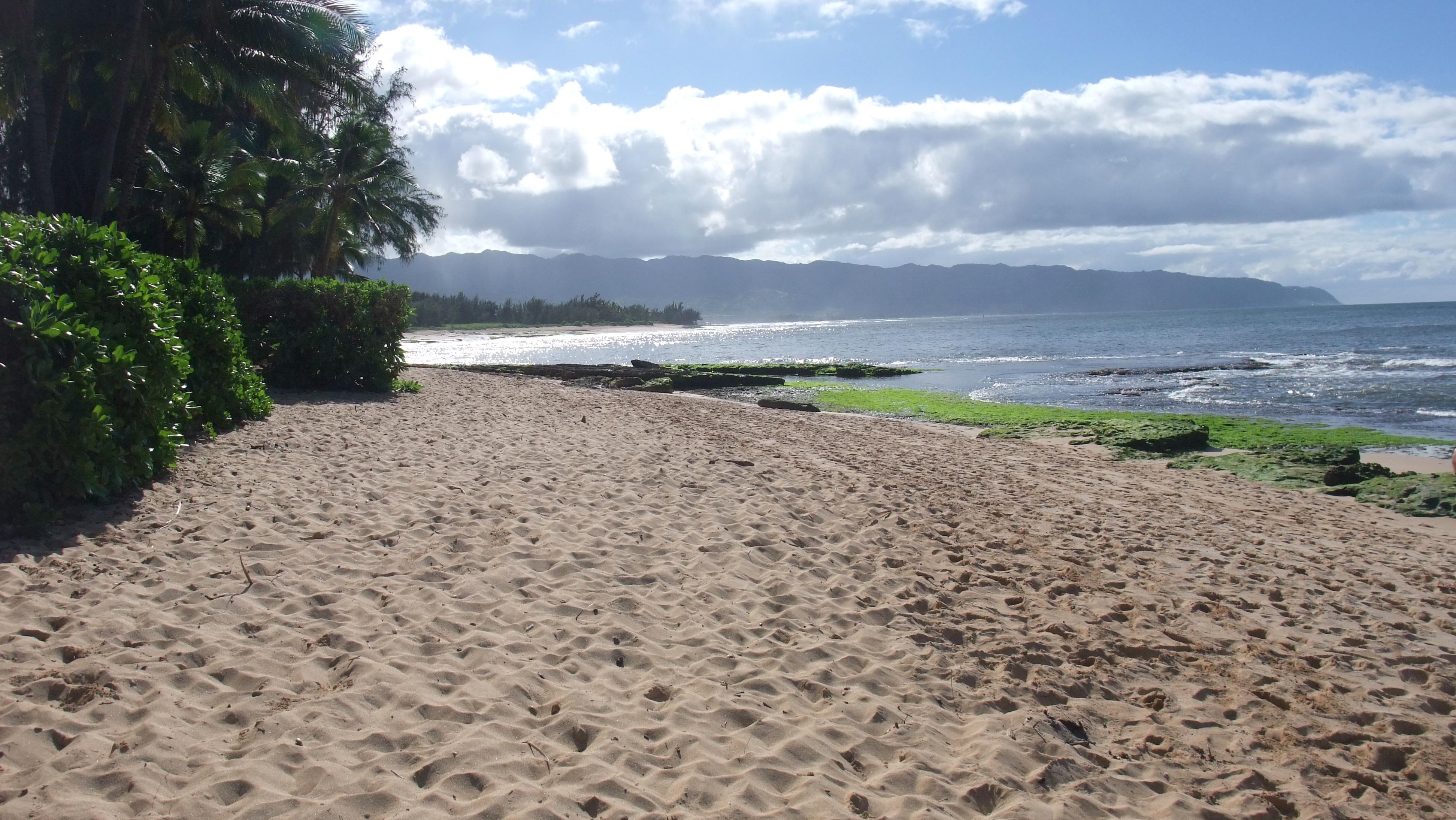 La plage de Lost