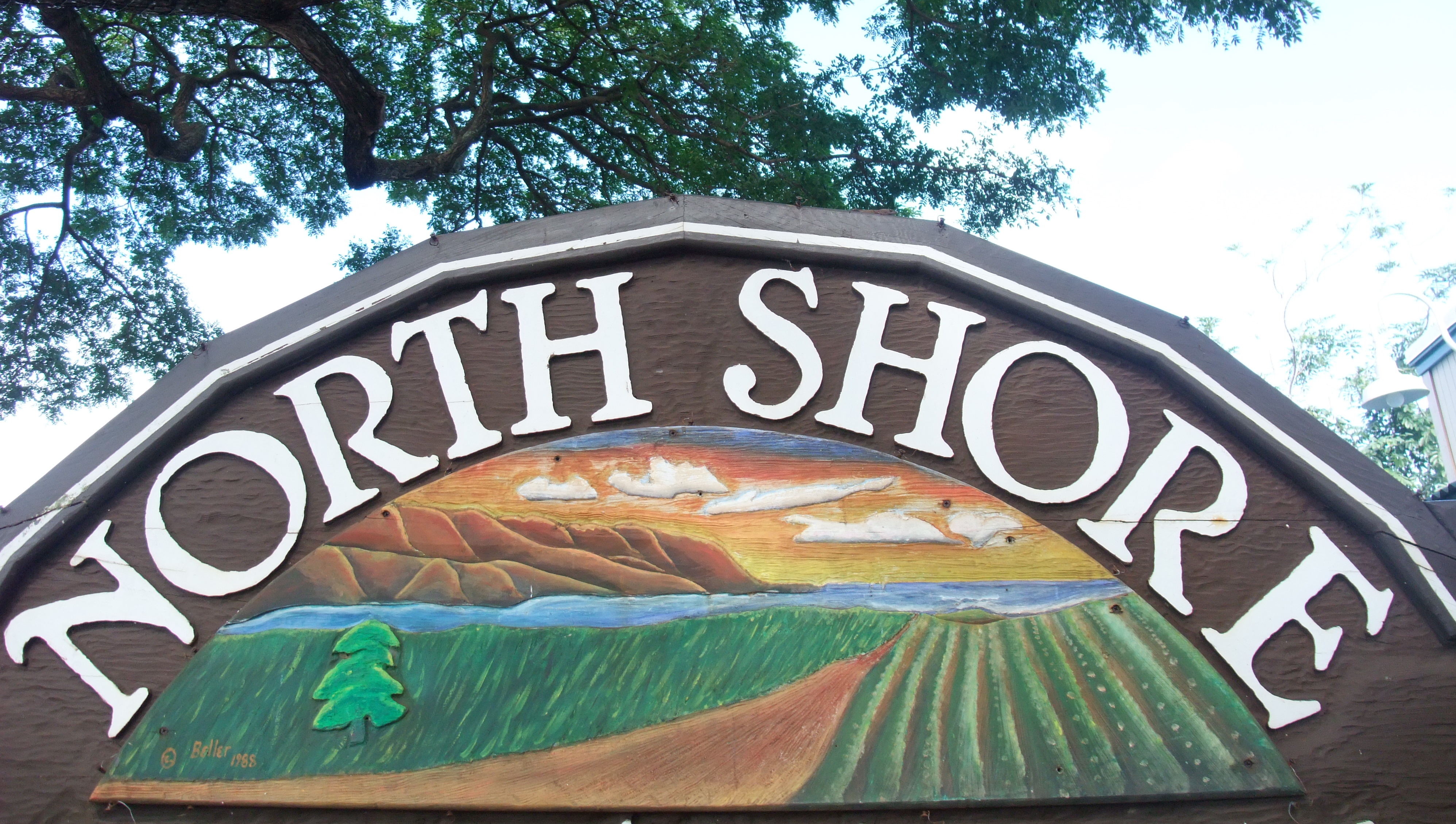 Welcome to the North Shore