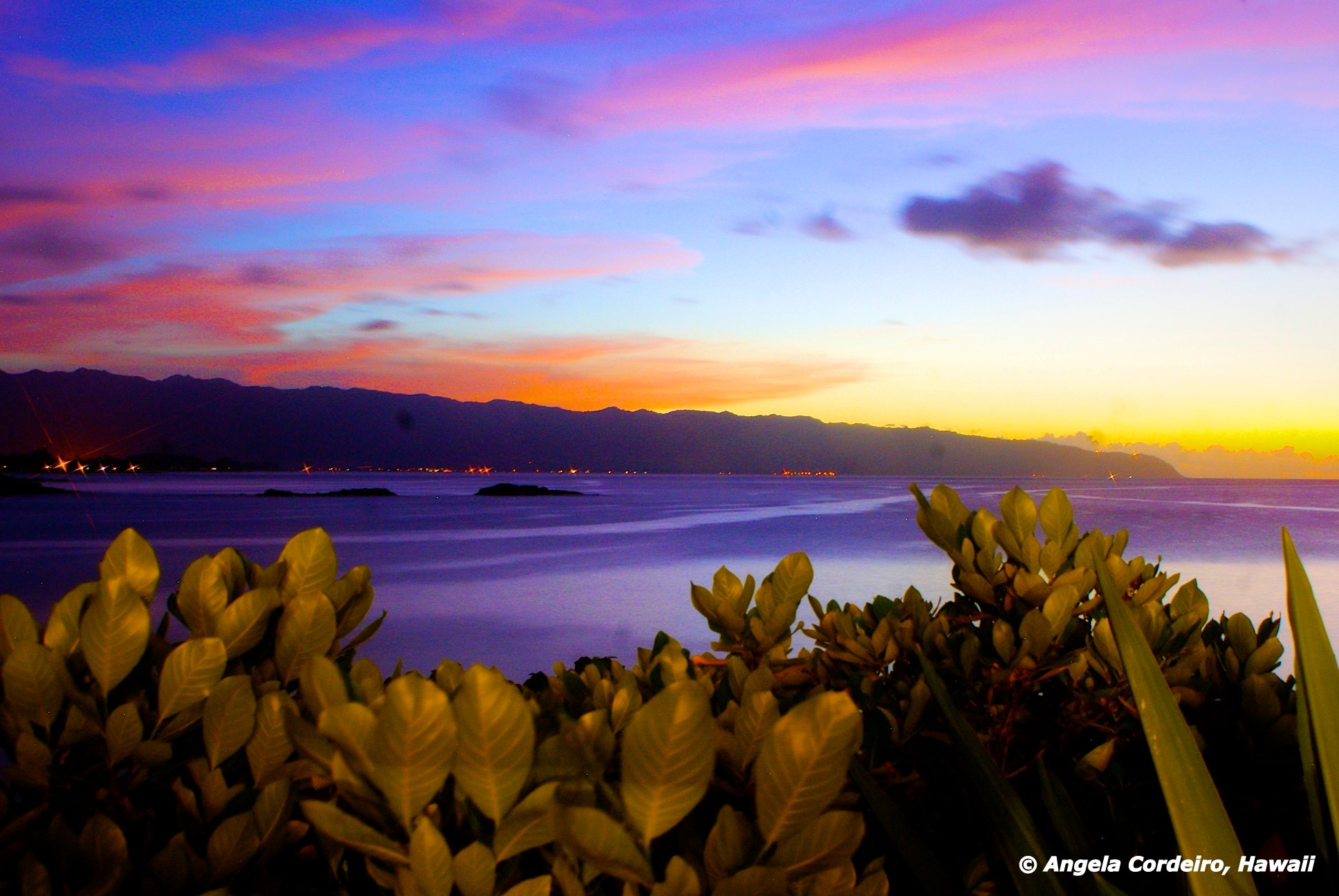 Kaena Point view from Waimea Bay garden - © Angela Cordeiro