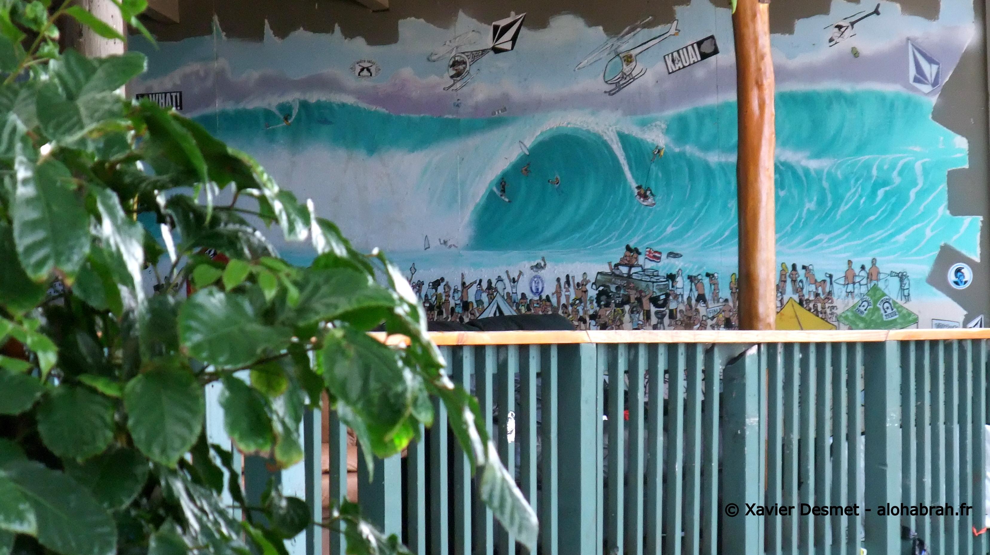 La fresque du mur de la seconde Pipe House de Volcom © Xavier Desmet - alohabrah.fr