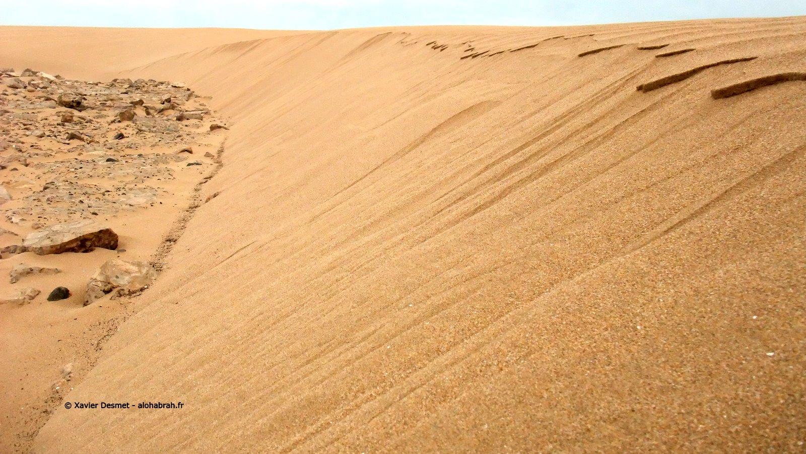 Dune Macro Effect © Xavier Desmet - alohabrah.fr