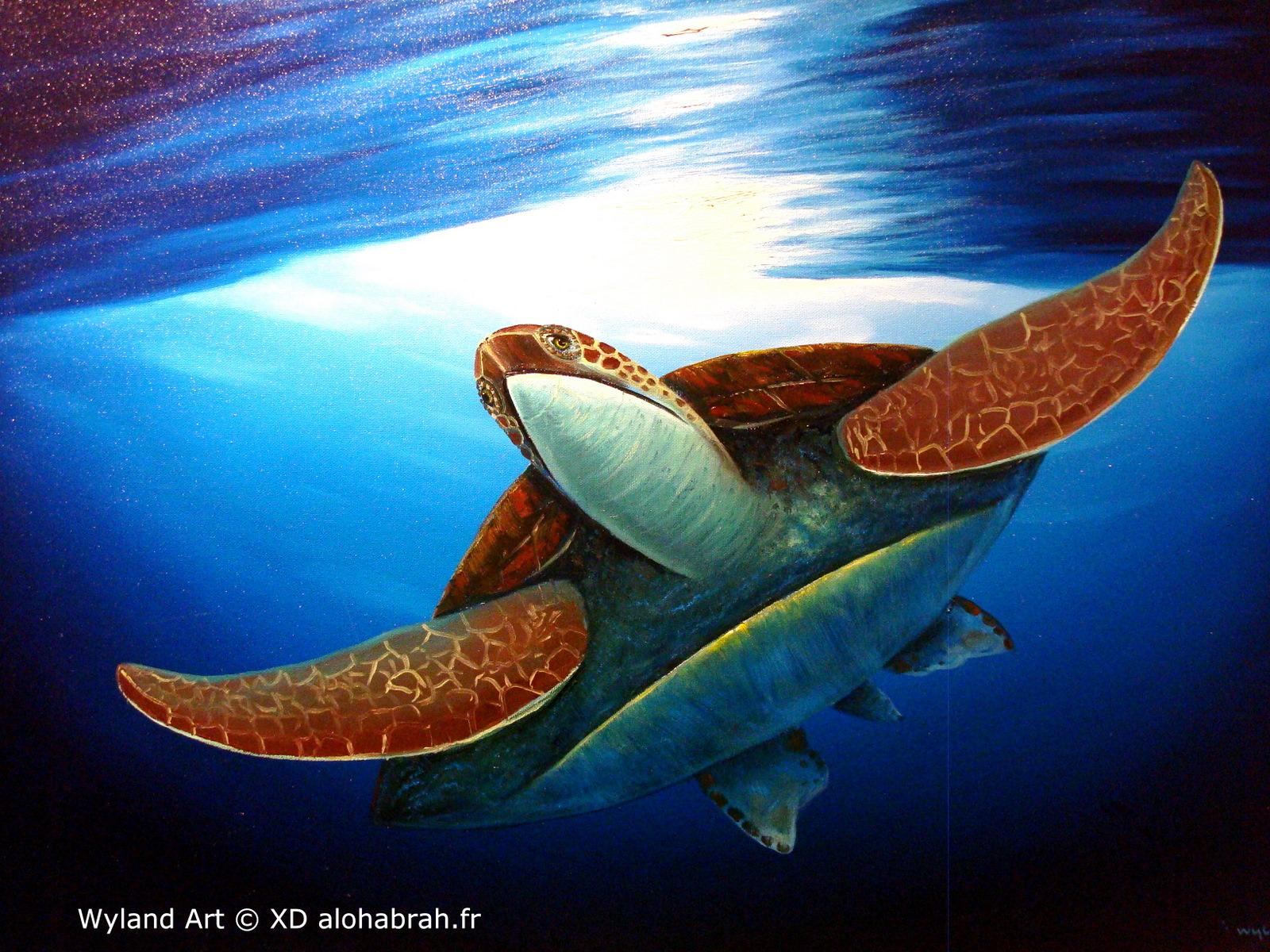 Hawaiian turtle 02 - Wyland Art © XD alohabrah.fr